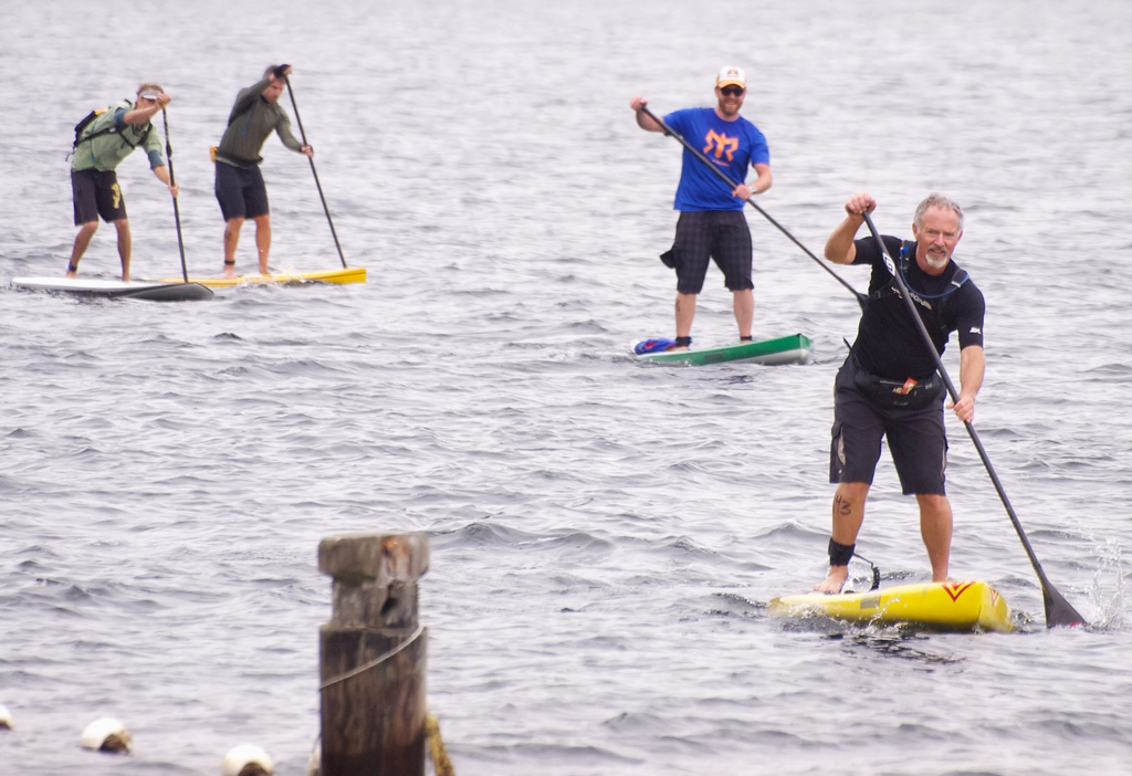 paddle board - people paddling on boards