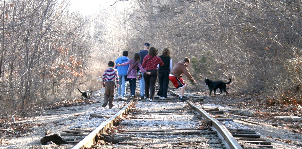 blended family, law - group of people and dog walking along railway track