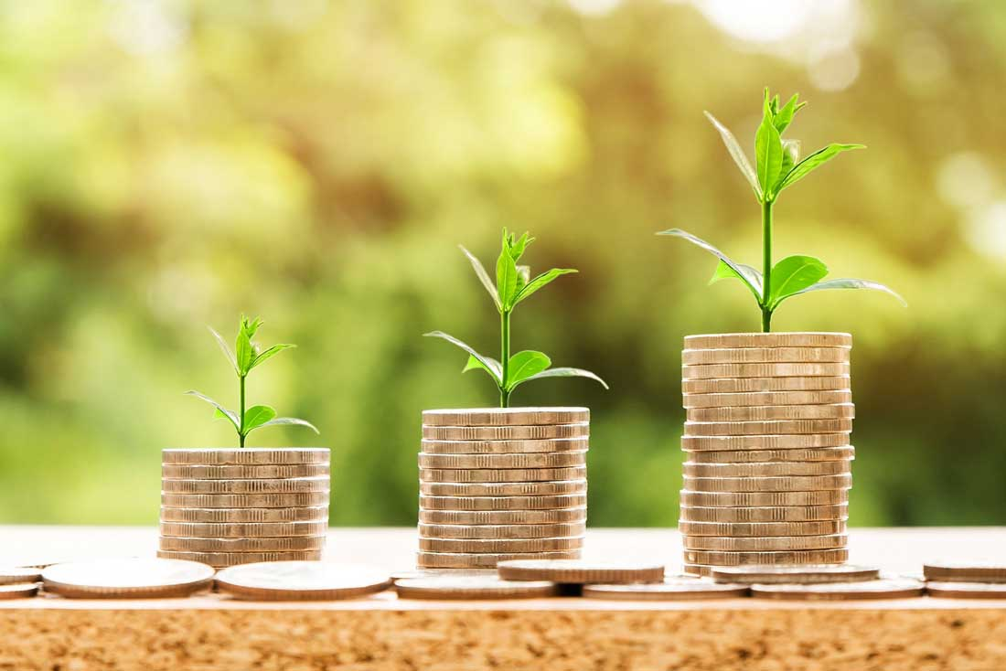 types of irrevocable trusts - coins and small plants